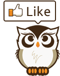 Facebook like owl