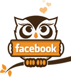 Facebook tips Owl